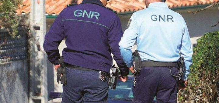 Touro é abatido a tiro pela GNR por atacar a população na Azambuja