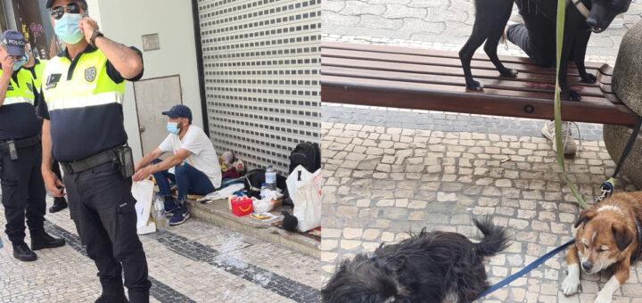 Mulher maldosa faz queixa de mendigo que tem 3 cães de companhia para lhe serem retirados